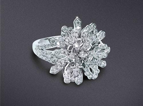 Marvella:为你封存最美的冬日之花