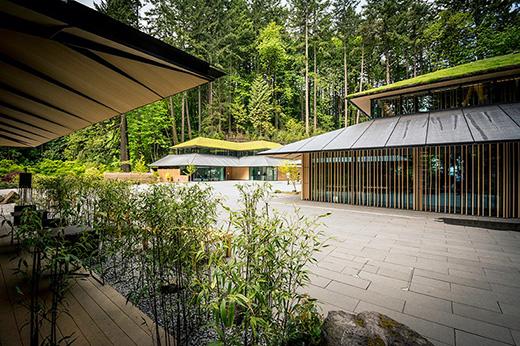 """用绿色屋顶的""""文化村"""""""